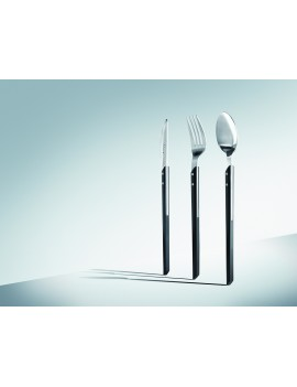 Set 48 couverts Nara 5004 : Fourchettes - Cuillères - Couteaux - Cuillères à café ETERNUM