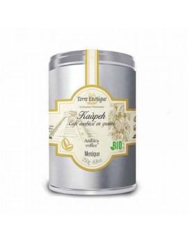 Kaàpeh Café Arabica Bio en grains Mexique 250 g TERRE EXOTIQUE
