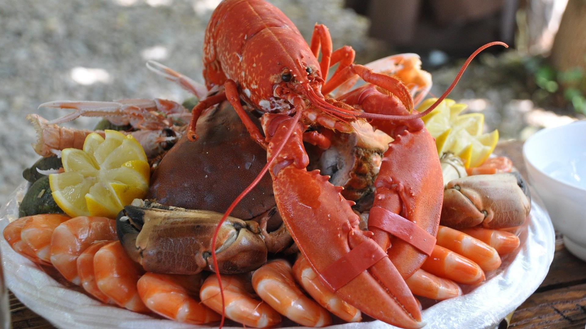 Un plateau de fruits de mer pour Noël ?