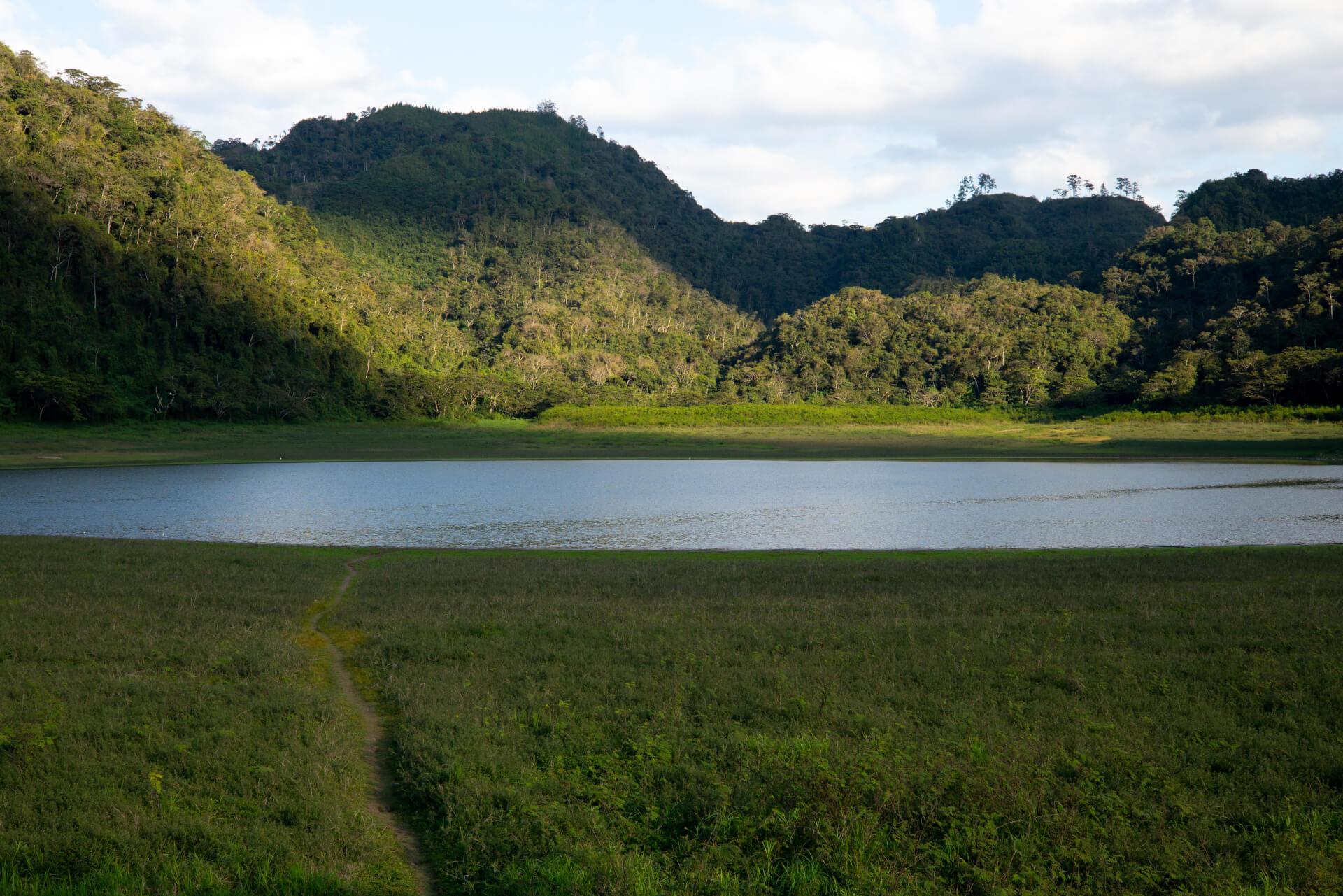 Plantation La Laguna