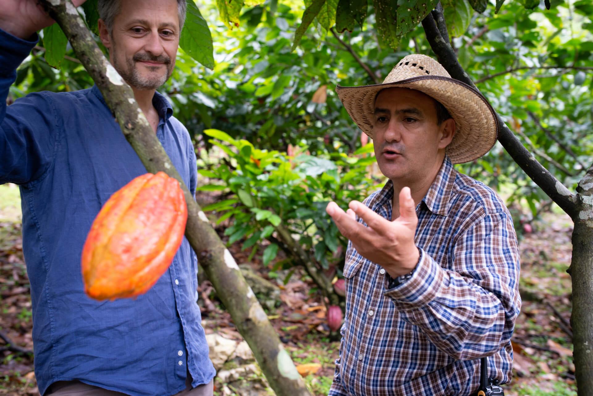 Plantation La Laguna - Michel Cluizel et Carlos Del Cid