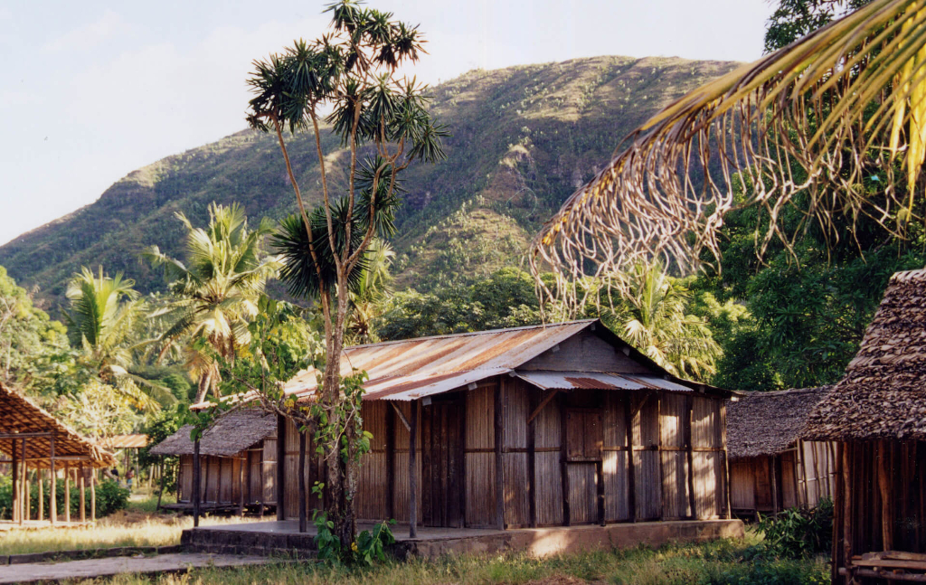 Plantation Mangaro